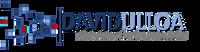 DAVIDULLOA_LOGO_Small.png
